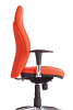 Postura Alto Ergonomic Chair - Chrome Adjustable Arms
