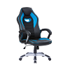 Gaming Chair with Silver Base Black/Skyblue