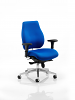 Chiro Plus Ergo Posture Chair Blue