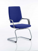 Xenon Visitor Cantilever Chair Stevia Blue